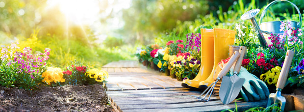 Enhance Curb-Appeal: Landscape & Paint